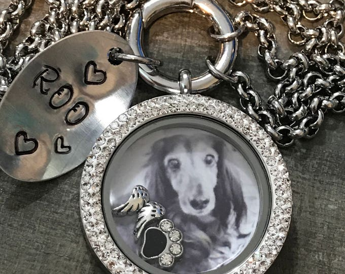 34 mm Crystal stainless steel Rainbow bridge pet memorial locket~floating charms ~ personalized