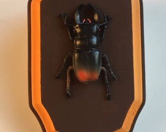 Faux taxidermy beetle