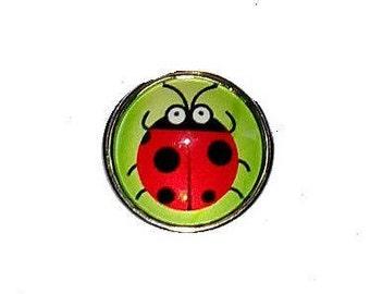 Snap glass Ladybug
