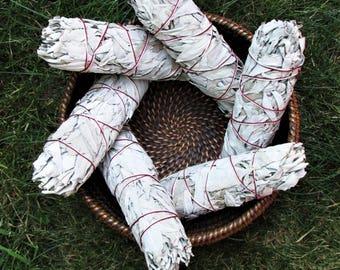 WHITE SAGE Smudge Bundle, California White Sage Stick, Sage Smudge Wand, Sage Smudge Bundle, Salvia apiana, 7 inch Sage Bundle
