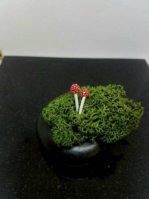Terrarium Figurines, Mushroom Decorations, 2 clay mushrooms, Terrarium accessories,miniature mushroom, fairy garden, Realistic mushrooms