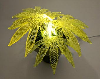 Floor Lamp, Lamp, Desk Lamp, Unique Lamp, Indoor Plant, Housewarming Gift, Table Lamp, Led Lamp, Hemp Lamp Plant, Night Light, Home Decor