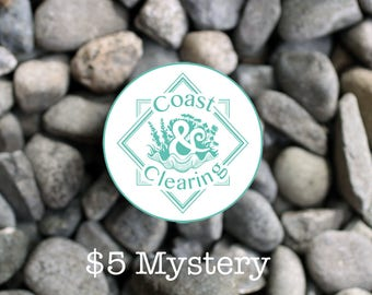 5 Dollar Mystery Item! Perfect for Small Gifts, White Elephants, Mystery Presents, Bridal, Try Something New, FOMO