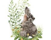Hand Embroidery Kit - Wild Rabbit Needle Painting Embroidery - Embroidery Art Picture