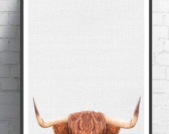 Highland Cow Art print, Wall Art, Highland Cow,nursery wall art, Animal art, Animal decor, Animals art, Baby animals, Kids art