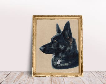 Custom Dog Portrait - Pencil drawn, custom drawing, animal illustration, colored pencil, from photo, dog headshot, made to order.