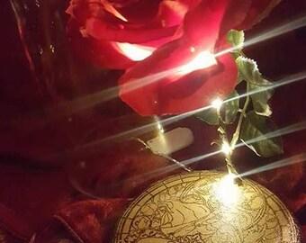 Custom Engraved Light Up Enchanted Rose