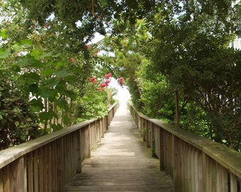 Mom's Walkway, Public Access 5, Wrightsville Beach, North Carolina