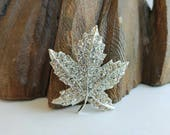 "Sweet Vintage Signed ""Coro"" Pavé Rhinestone Maple Leaf Brooch- Tree Nature Canada Day Silver Tone"