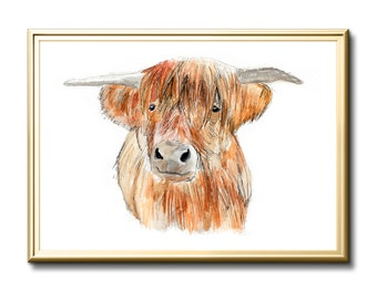 Limited Edition Art Print, Highland cattle, cow, original art, watercolour painting, watercolor painting