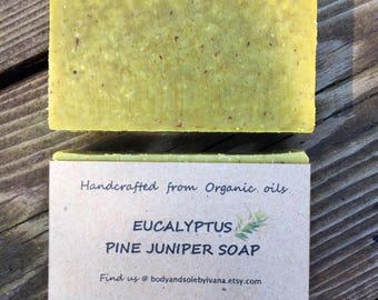 Eucalyptus Pine Juniper soap, organic soap, natural soap, artisan soap, herbal soap, vegan soap, cold pressed, aromatherapy, bath+body, bath