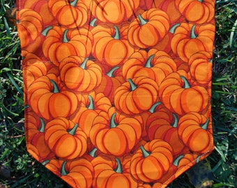 Harvest Pumpkin Collar Bandana