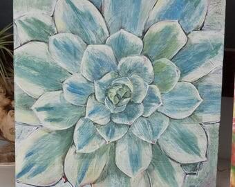 Succulent Rosette Original Art