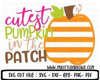 Cutest pumpkin in the patch svg - girl pumpkin patch - pumpkin patch svg - pumpkin svg - pumpkin dxf - pumpkin cut file - stripe pumpkin