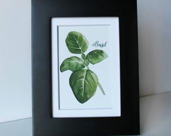 Basil Herb Print 4x6