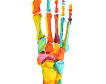 PRIVATE LISTING - Digital Bones of the Foot Print