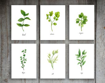 Printable Instant Download Kitchen Herbs Watercolor Illustration Art Print Set of 6 Option 2