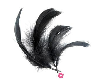 x 10 black goose feathers 4 to 10 cm (61F)