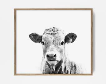 bw cow print, cow wall art, steer print, bw southwest print, country decor, farm print, farm house decor, country wall art, southwest art