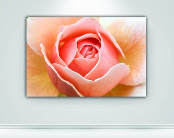 Roses Download Digital Floral Photography Roses Canvas Print Macro Nature Digital Fine Art Wall Art Home Decor Flower Print Canvas