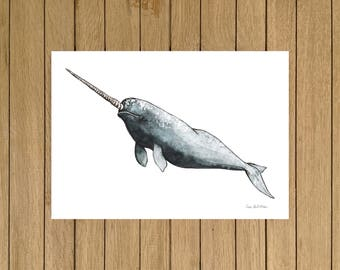 Narwhal, Watercolour Illustration, Giclée Print, A3 A4 or A5 size