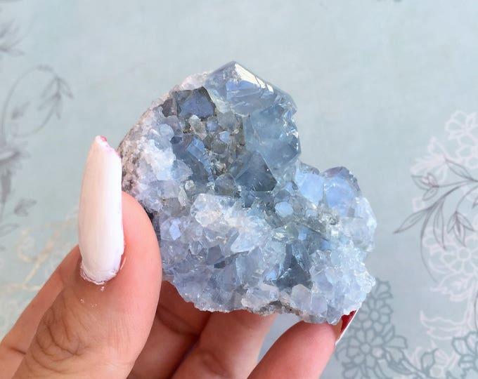 Blue Celestite Crystal Cluster w/ Reiki