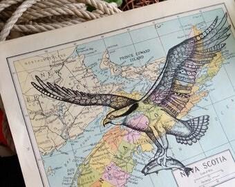 Nova Scotia Map with Osprey