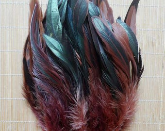 MAXI (PROMO) set of 50 various confections M120 premium feathers