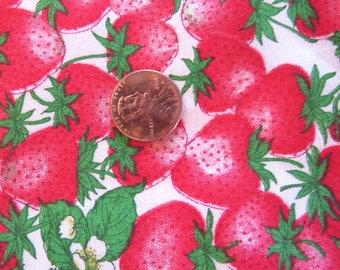 Vintage Strawberry Print Cotton Concord Fabrics 44x2yds