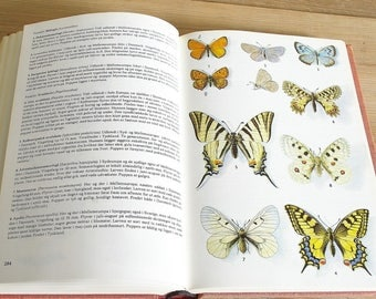 Vintage book flora animals plants butterflies.Illustrations flower guide.Wildlife birds fish fireflies wildflowers owls fish.Collage pages