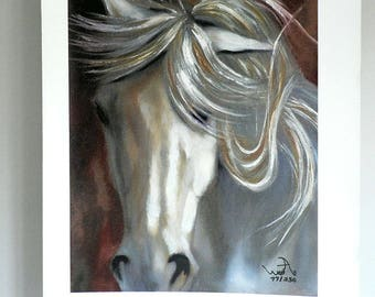 White Horse Print on Canvas