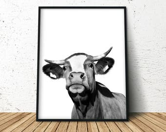 Cow Print, Modern Farmhouse, Cow Poster, Cattle Photography, Farm Animal Wall Art, Farm Animal Print, Farm Animal Nursery, Farm Nursery