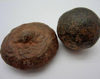 MOQUI MARBLE Pair Shaman Stone, Utah USA 77g