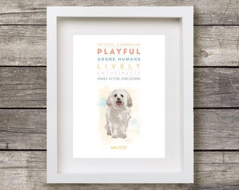 MALTESE Dog: Trait Print - Breed Personality Poster Dog Print - Gift Pet Lovers Archival Watercolour Art PRINT