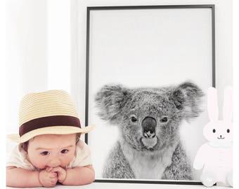 Koala Print, Koala Bear Print, Nursery Animal Print, Nursery Animals, Koala Bear Wall Art, Nursery Printable, Nursery Art Print, Koala, Bear