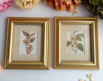 Vintage Pair of Framed Green and Yellow Floral Prints: 5''x6.5 Inches (14 cm x 17 cm) Gold Tone Framed Floral Prints, Elegant Home Decor