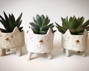 Stoneware kitty planter