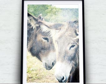 Donkeys in a meadow, farm animals, animal picture, cute animal, watercolor effect , ornamental photo, decoration lounge, room child