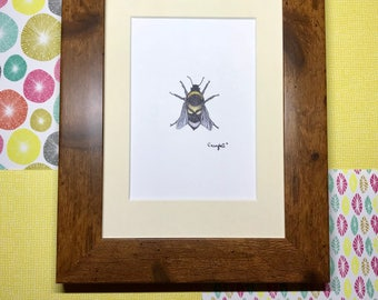 "Framed ""Skullbee"" Bumblebee Art Print, rustic frame, wooden frame print, shabby chic wall art, insect wall art"