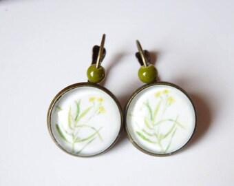 broom Herbarium style flower cabochon earrings