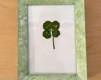 Real Four Leaf Clover in Small Mint Green Frame (Rectangle) - Fridge Magnet and Stand