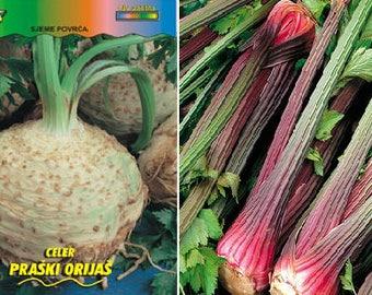 Celery Giant Prague (800 SEEDS) or Celery red stalk (150 SEEDS)