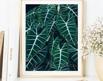 Dark leafy print - A5