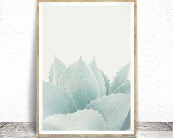 Succulent Print - Baydreem. Succulent Wall Art Cactus Print Cacti Wall Art Cacti Print Succulent Poster Cactus Poster Agave Botanical Art