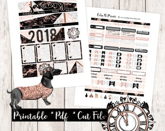 January EC Monthly Printable Planner Stickers/Monthly Kit Kit/For Use with Erin Condren/Cutfiles Winter New Years Glam Marble Rose Gold Chic