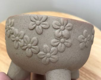 Small clay pot succulent planter