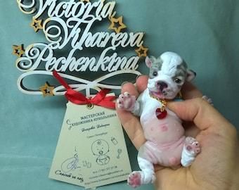 silicone the puppy English bulldog 5 in by Viictoria Vihareva-Pechenkina