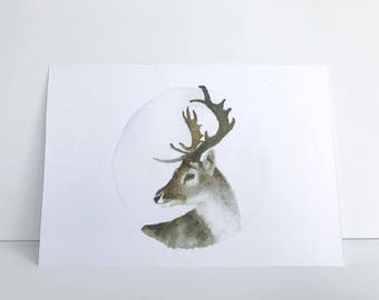 4 1/2'' x 6 1/2'' Deer Watercolor Painting Print