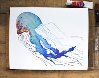 Jellyfish Reef