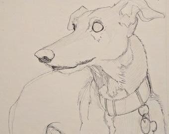 Custom Pet Portrait - X-Large
